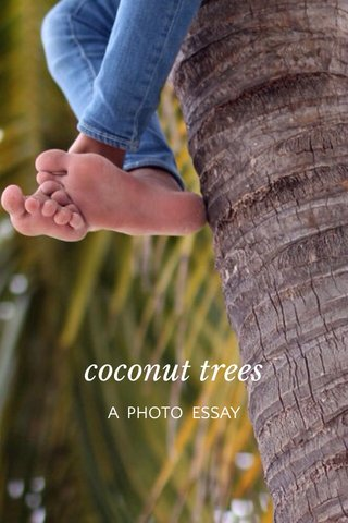 coconut trees A PHOTO ESSAY
