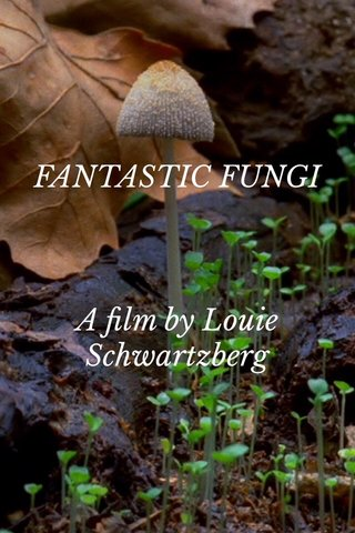 FANTASTIC FUNGI A film by Louie Schwartzberg