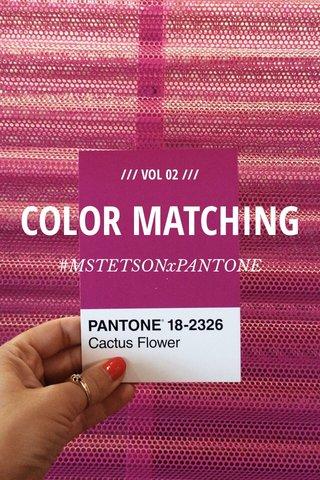 COLOR MATCHING #MSTETSONxPANTONE /// VOL 02 ///
