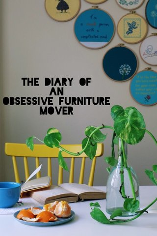 The Diary of An Obsessive Furniture Mover