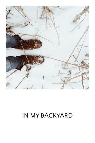 IN MY BACKYARD