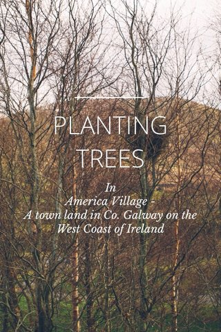 PLANTING TREES In America Village - A town land in Co. Galway on the West Coast of Ireland