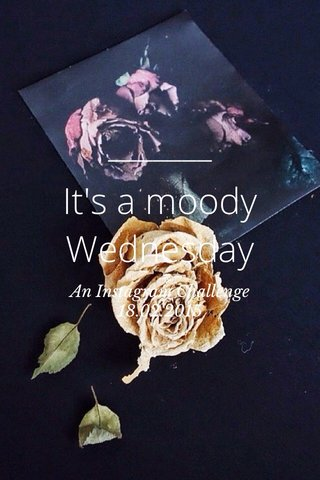 It's a moody Wednesday An Instagram Challenge 18.02.2015