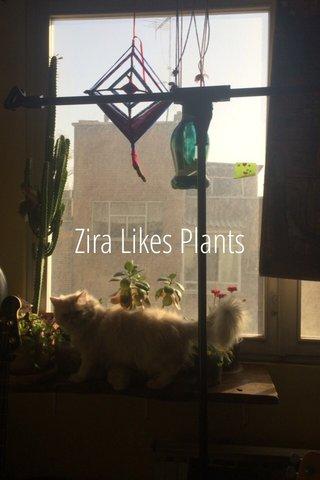 Zira Likes Plants