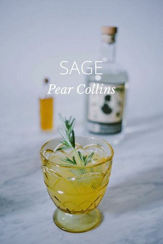 SAGE Pear Collins