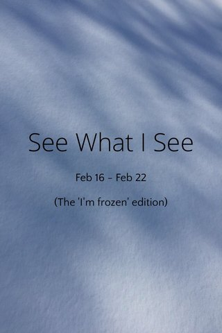 See What I See Feb 16 - Feb 22 (The 'I'm frozen' edition)