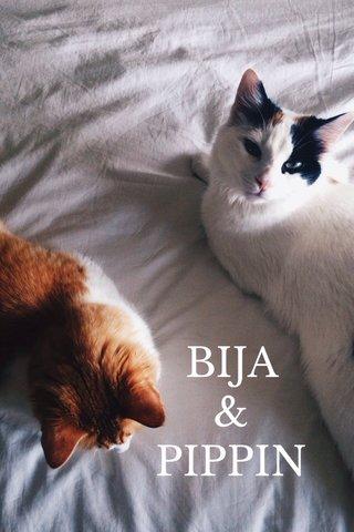 BIJA & PIPPIN