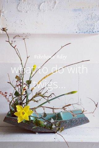 what to do with twigs... #ikebana #diy