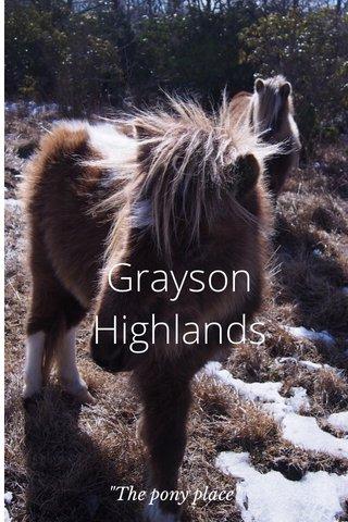 """Grayson Highlands """"The pony place"""""""