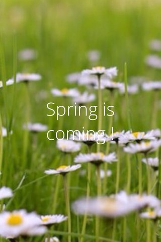 Spring is coming !
