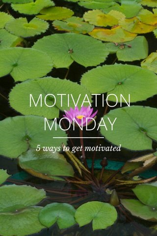 MOTIVATION MONDAY 5 ways to get motivated