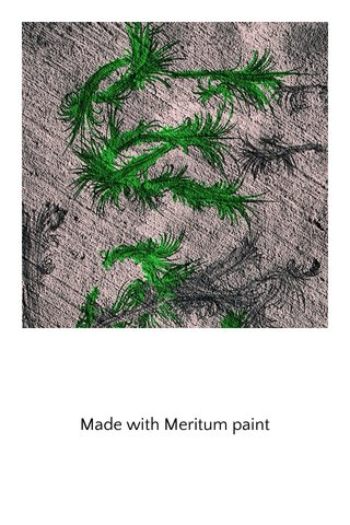 Made with Meritum paint