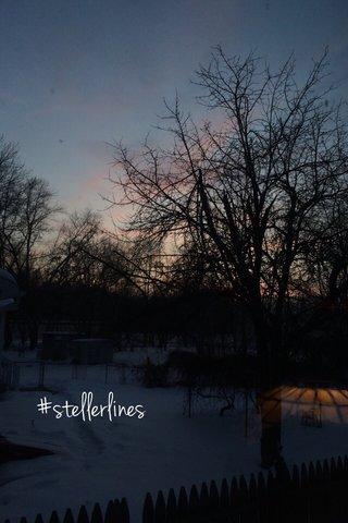#stellerlines