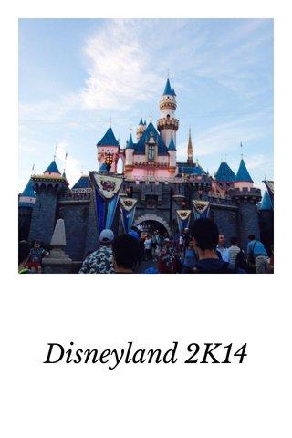 Disneyland 2K14