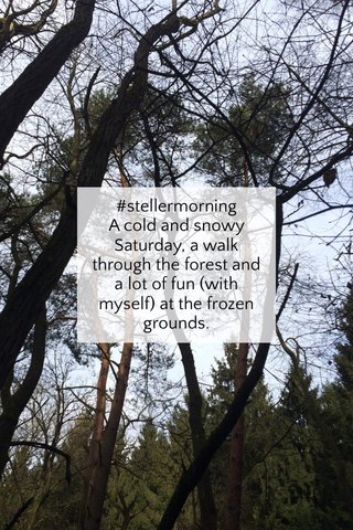 #stellermorning A cold and snowy Saturday, a walk through the forest and a lot of fun (with myself) at the frozen grounds.