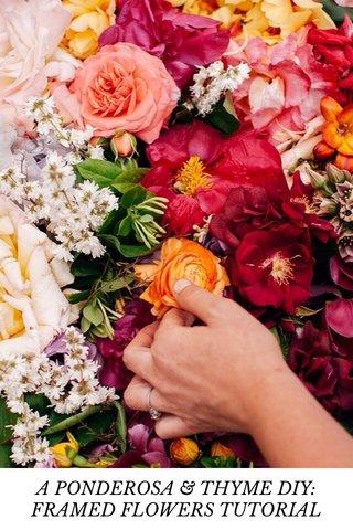 A PONDEROSA & THYME DIY: FRAMED FLOWERS TUTORIAL
