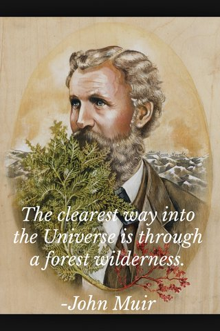 The clearest way into the Universe is through a forest wilderness. -John Muir