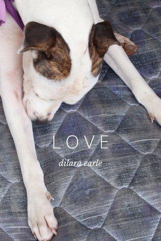 LOVE dilara earle