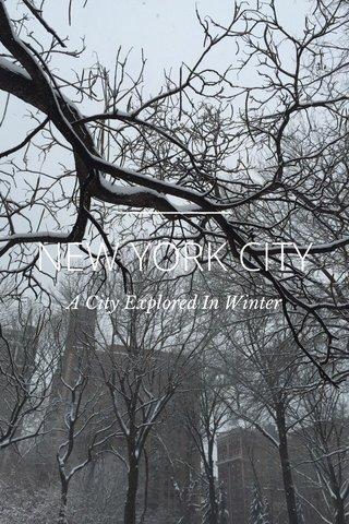 NEW YORK CITY A City Explored In Winter