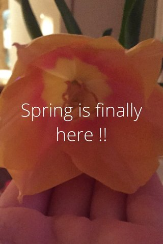 Spring is finally here !!