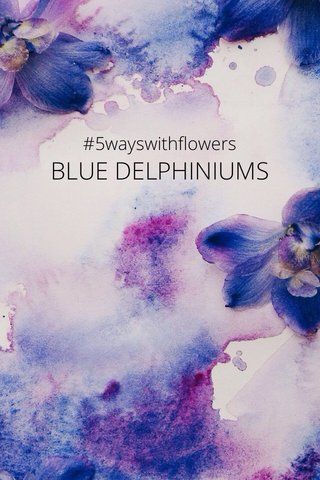 BLUE DELPHINIUMS #5wayswithflowers