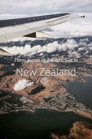 New Zealand Plane leaves in 3 hours. Get to