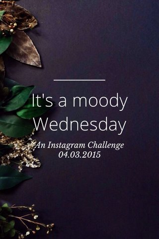 It's a moody Wednesday An Instagram Challenge 04.03.2015
