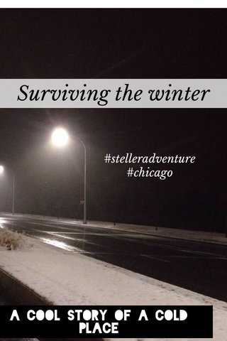 Surviving the winter A cool story of a cold place #stelleradventure #chicago