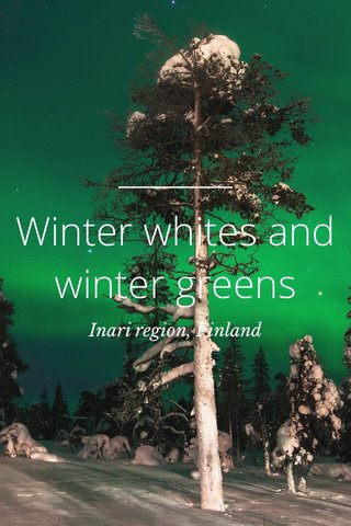 Winter whites and winter greens Inari region, Finland