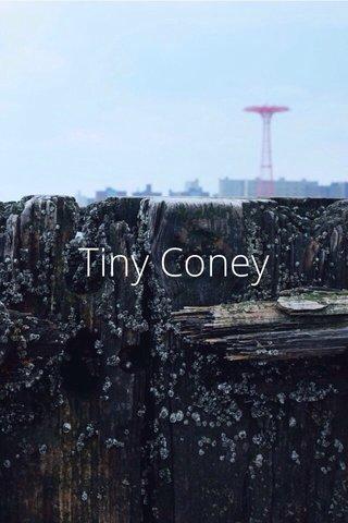 Tiny Coney