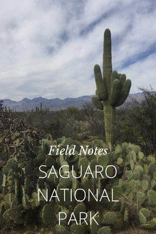 SAGUARO NATIONAL PARK Field Notes