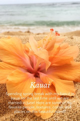 Kauai Spending spring break with my fiancé in kauai for the last time until we are married in June! Here are some of my favorite people, textures, colors, and places on this beautiful island!