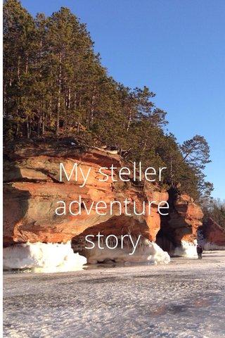 My steller adventure story