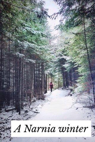 A Narnia winter
