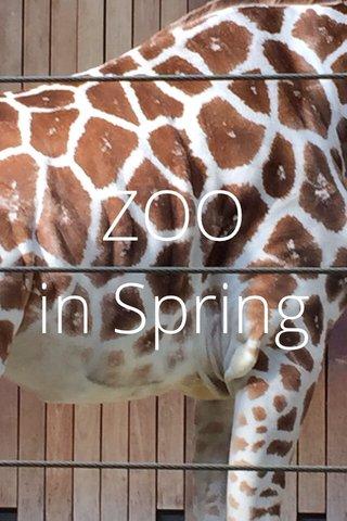 ZOO in Spring
