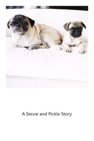 A Stevie and Pickle Story