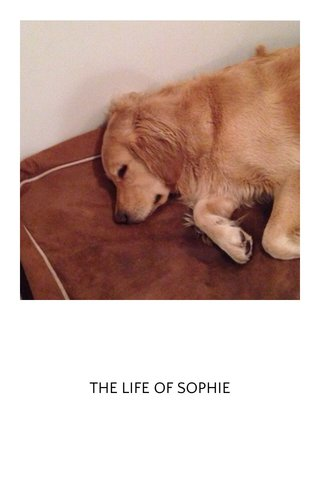 THE LIFE OF SOPHIE