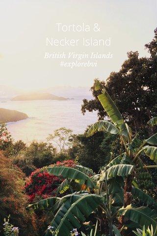 Tortola & Necker Island British Virgin Islands #explorebvi