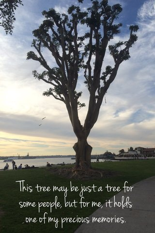 This tree may be just a tree for some people, but for me, it holds one of my precious memories.