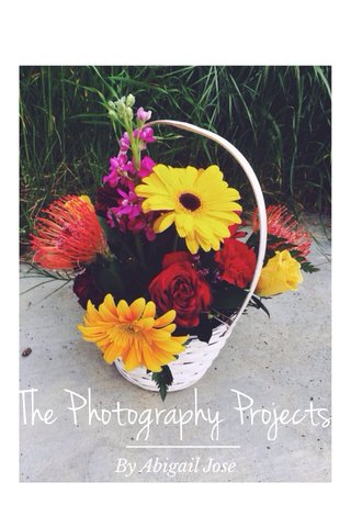 The Photography Projects By Abigail Jose