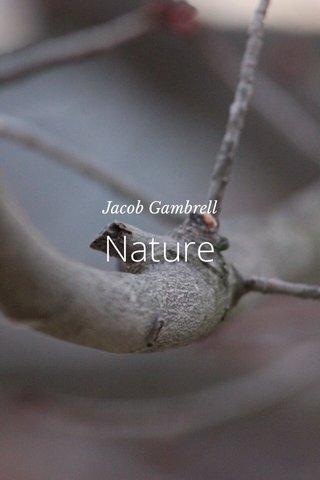Nature Jacob Gambrell