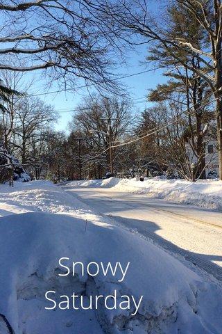Snowy Saturday