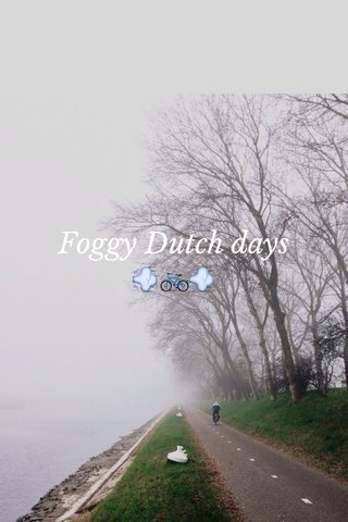 Foggy Dutch days 💨🚲💨