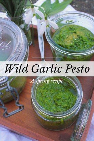 Wild Garlic Pesto A spring recipe