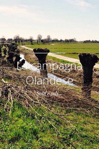 La campagna Olandese Sole e soli...