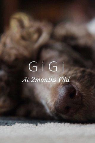 GiGi At 2months Old