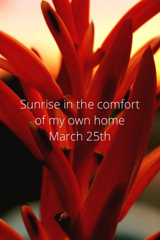 Sunrise in the comfort of my own home March 25th