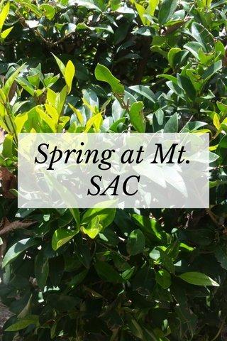 Spring at Mt. SAC