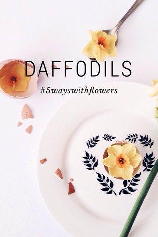 DAFFODILS #5wayswithflowers