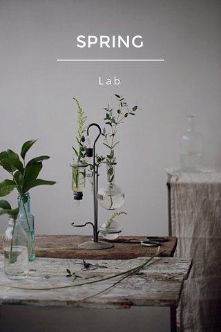 SPRING Lab
